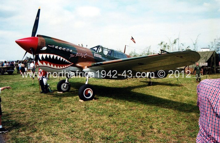 Wings Of Freedom P-40